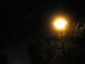 Notafarkingstreetlight